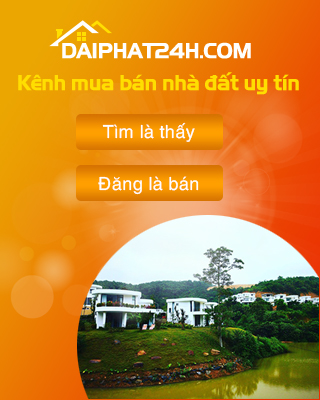 Banner Phải-Giữa 01